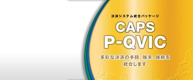 多通貨決済の導入も可能なCAPS P-QVIC